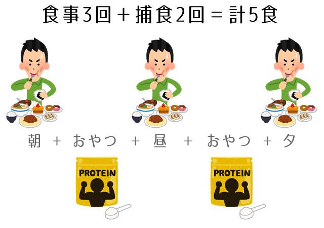 食事3食と捕食2回で5食