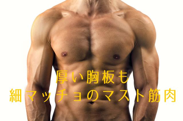 厚い胸板も細マッチョのマスト筋肉