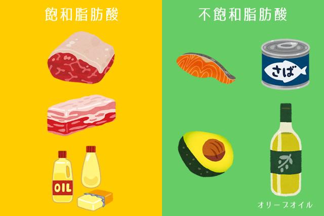 飽和脂肪酸と不飽和脂肪酸の食材